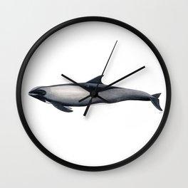 Melon-headed whale Wall Clock