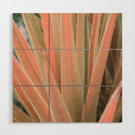 Pink aloe Wood Wall Art