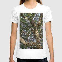 Cork Oak Tree Branches T-shirt