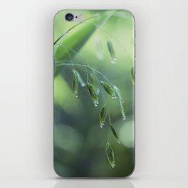dew drop morning iPhone Skin