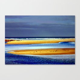 Sandbars Canvas Print
