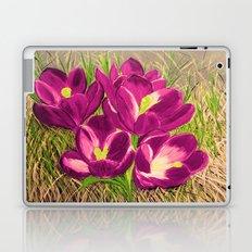 Crocus flowers Laptop & iPad Skin