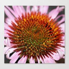 Floral Universe Canvas Print