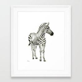 Zebra Watercolor Baby Animals Framed Art Print