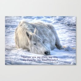Snow Drifting - Equine Photo and Quote Canvas Print