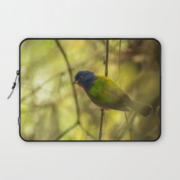 Nonpareil: A Painted Bunting Laptop Sleeve