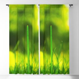 Blades Of Grass Macro Closeup Blackout Curtain