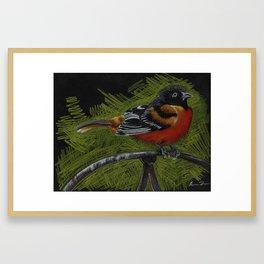 """""""Lawn Ornament"""" Framed Art Print"""