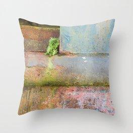 Stowaway Throw Pillow