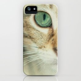 FELINE BEAUTY iPhone Case