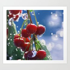 Summer rain on cherries Art Print