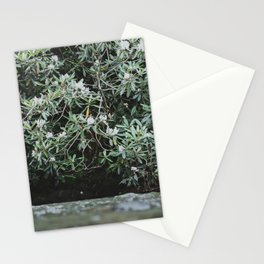 Streams of Living Water 2 Stationery Cards