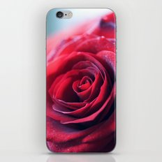 Crush iPhone & iPod Skin