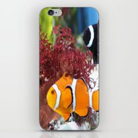 finding nemo iPhone & iPod Skins featuring Finding Nemo! by Becky Dix