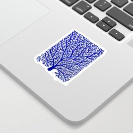 Fan Coral – Navy Sticker