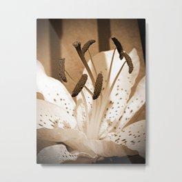 Oriental Lily named Muskadet Metal Print