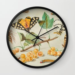 Study of Butterfly and Insects 17th Century Wall Clock