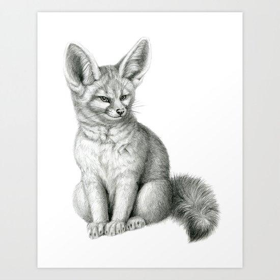 Fennec SK042 Vulpes zerda Art Print