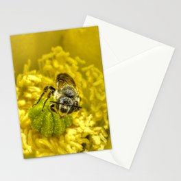 Rainy Day Cactus Flower Bee Stationery Cards