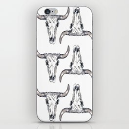 New Mexico iPhone Skin