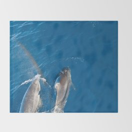 Dolphins with rainbow Throw Blanket