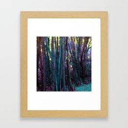 Afternoon in Wonderland Framed Art Print