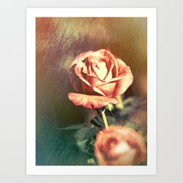 Scents of Roses Art Print