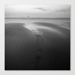sea3 Canvas Print