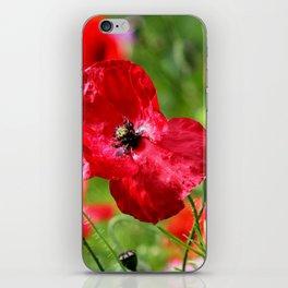 wild poppies iPhone Skin