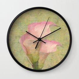 Lírio de Calla em Rosa Wall Clock