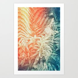Fern and Fireweed 02 - Retro Art Print