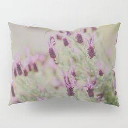 Lavender Dreams Pillow Sham
