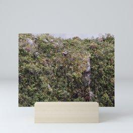 Flora Andina Mini Art Print