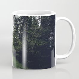 Down the Road - Mountains, Forest, Austria Coffee Mug