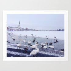 Reykjavik Duck Pond Art Print