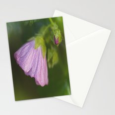 Malva With Morning Dew Stationery Cards