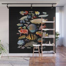 Freshwater tropical fish Wall Mural