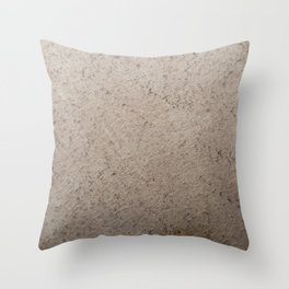 Clay Sandstone Throw Pillow