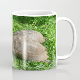 Bullied into Submission - Mating Tortoises Coffee Mug