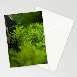 Silk of nature Stationery Cards
