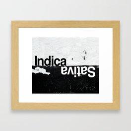 Indica vs Sativa Framed Art Print