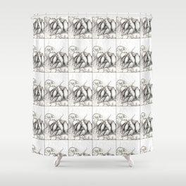 Rats Feeding on Milk Shower Curtain