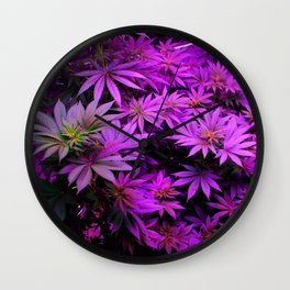 Colorado Marijuana LED Grow Lights Wall Clock