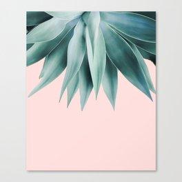 Agave fringe - blush Canvas Print