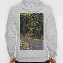 Autumn Path Hoody