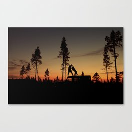 Two from the woods Canvas Print