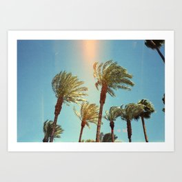 Palm Trees #2 Art Print