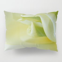 White Tulip by Teresa Thompson Pillow Sham