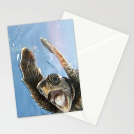 Screaming Turtle Stationery Cards