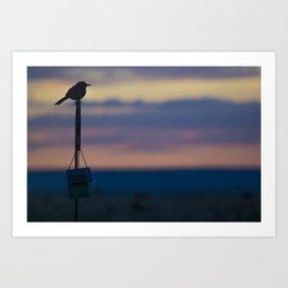 The Early Bird Art Print